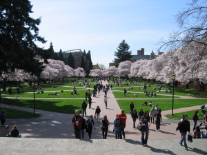 """University of Washington Quad, Spring 2007"" by Punctured Bicycle - Own work. Licensed under Public Domain via Wikimedia Commons"