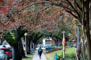 By Tulane Public Relations (CampusUploaded by AlbertHerring) [CC BY 2.0], via Wikimedia Commons